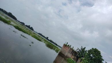 Photo of بہار میں سیلاب کا بحران